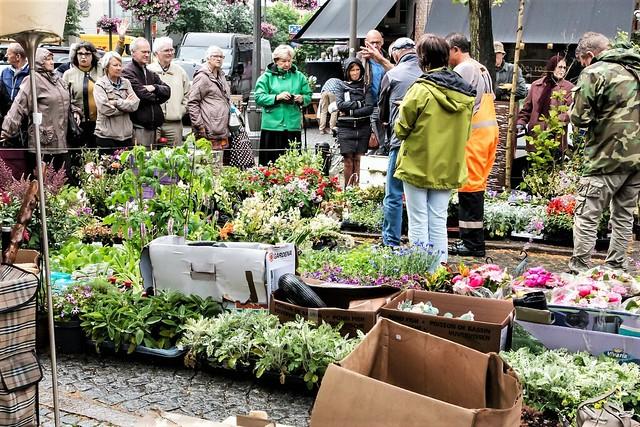 Antwerpen, Vrijdagmarkt.