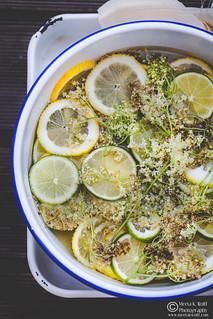 Elderflower Cordial by Meeta K. Wolffl-0152 | by Meeta Wolff @ What's For Lunch, Honey?