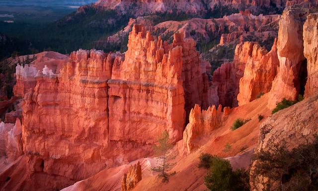 Red Dawn at Bryce Canyon