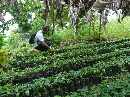 Climate-Smart Village in Santa Rita, Copán (Honduras) | by CGIAR Climate