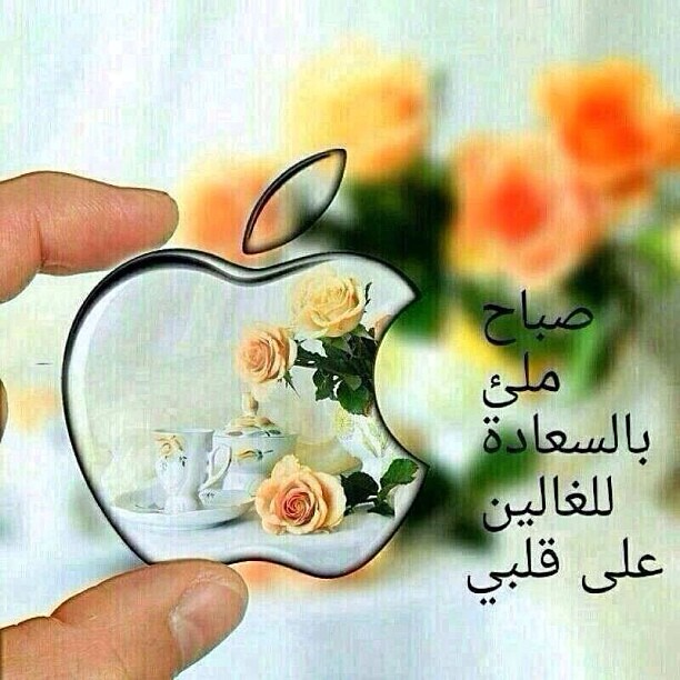 عبارات ترحيب بالضيوف حي الله ضيوفنا