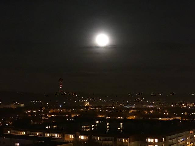 Lieber Mond, dein Silberflimmern durch dieses Buchengrün, wo Phantasien und Traumgestalten immer vor mir vorüberfliehn. Enthülle dich, daß ich die Stätte finde, wo oft mein Mädchen saß, und oft, im Wehn des Buchbaums und der Linde, der goldnen Stadt vergaß. Enthülle dich, daß ich des Strauchs mich freue, der Kühlung im Mondlicht gerauscht, und einen Kranz auf jeden Anger streue, wo sie den Bach belauscht der im Mondschein rauscht 0246
