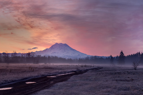 road mist mountains nature grass fog clouds rural sunrise canon landscape mood atmosphere trail rainier washingtonstate majestic mtrainier oldroad t4i 1riverat matthewreichel