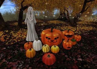 September (1) | by Achariya.net