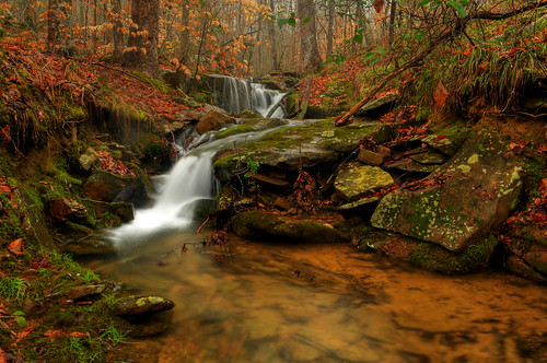 creek found secretwaterfall alabamabackroad backroaddekalb countydogtown alabamajohnnies tributaryaccidentally