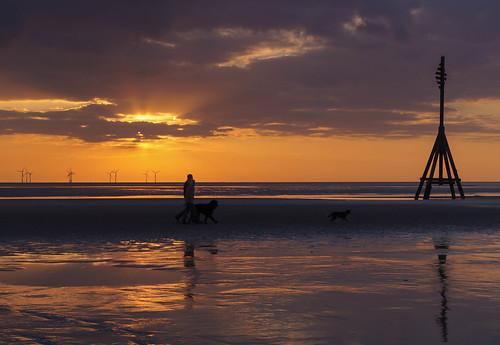 Walking the dogs   by Bev Goodwin
