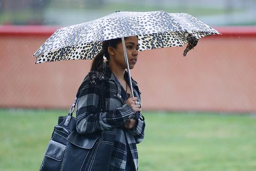 umbrella (78)