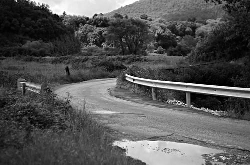 pentax k5 spring 2016 landscape pond lazio italy smcpentaxm50mmf17 blackandwhite monochrome depthoffield bend curve trees forest sky field grass guardrail stefanorugolo
