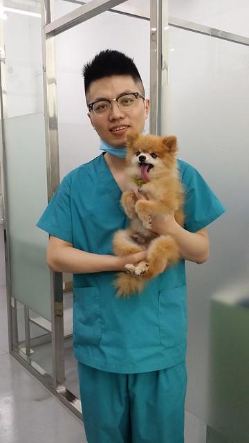Our veterinarian in Dalian 20160903_140518