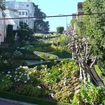 San Francisco, Ciudad 15