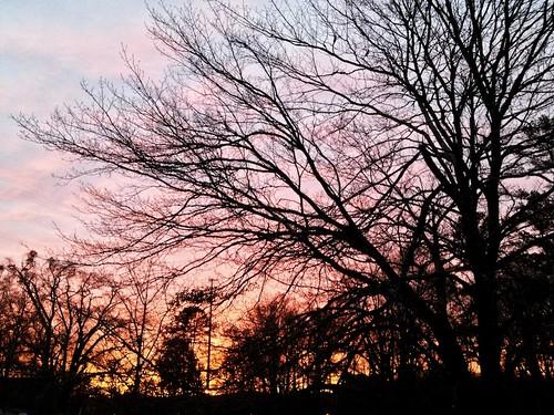 sky tree sunrise athens