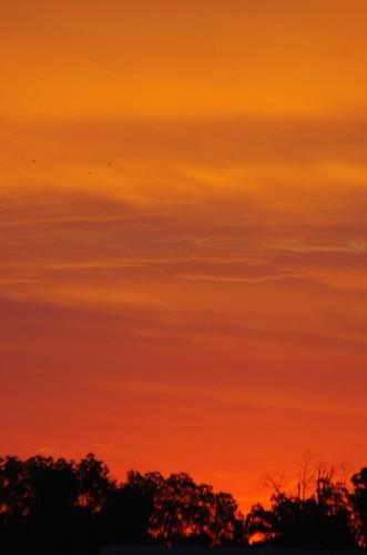 red clouds sunrise vanburen arkansas skytheme