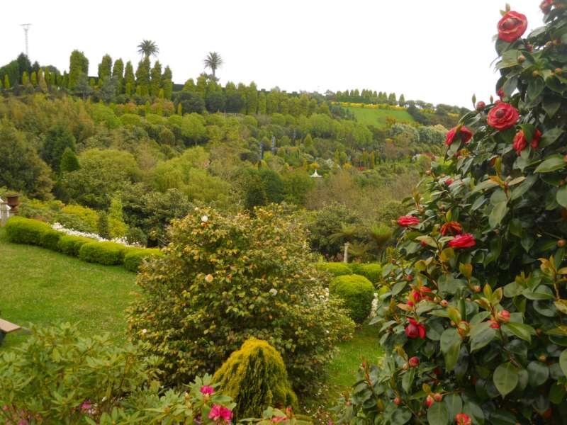 Jardines panrico abril 19