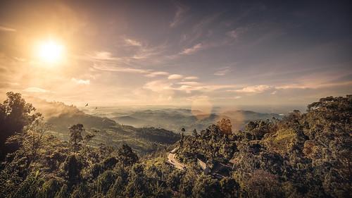 srilanka travel vacation landscape sky mountains green canon canoneos6d tamron 6d eos fullframe wideangle teaplantation field mountainside hill outdoor dawn sun morning samyang samyang14mmf28 14mm