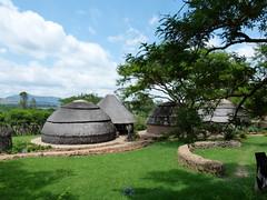 ma, 10/12/2012 - 11:45 - 040. Voorbeeld van een traditioneel Zoeloedorp in het Talana museum