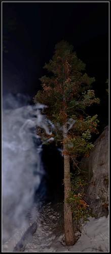 wild vacation usa tree art nature america landscape nikon smoke nevada gimp nationalforest photograph majestic geo moutains anything 702 funnin photograghy vertorama geografics