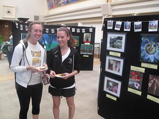 Environmental Art Show