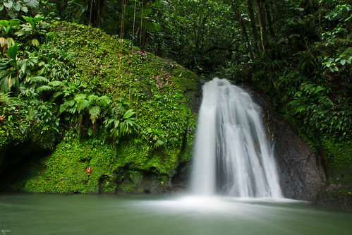 longexposure green water waterfall movement fresh le jungle tropical tropic caribbean foss guadeloupe refreshment refresh waterval nd8 cascadeauxecrevisses