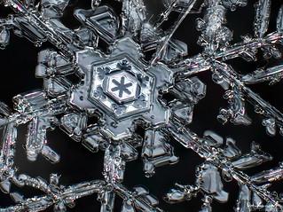 Majestic Ice | by Don Komarechka