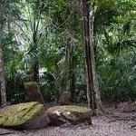 Guatemala, Ruinas de Tikal 04