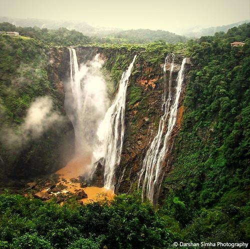 Jog Falls   by Darshan Simha