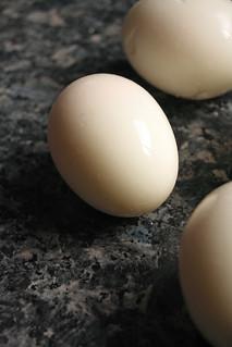 Scotch egg   by hberthone