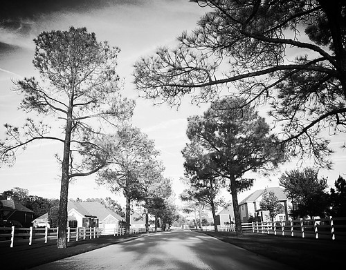favorite usa monochrome digital landscape photography mono us photo vanishingpoint yahoo blog google interesting flickr pretty solitude texas foto view unitedstates image noiretblanc random unique tx misc horizon country memories perspective creative scenic paisaje monotone wanderlust 100views noedit vista variety dslr pastoral ontheroad hdr infinite interesante nopostprocessing unedited iphone variedad noeditado 2013 iphone4 fotografía prohdr ihdr compflight gogoloopie deeashley dionneashley dionnehartnett mylovelymuse shehadpotential symmetryisperfection