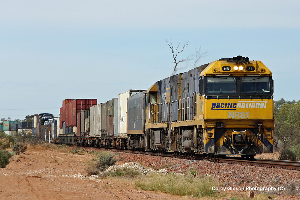 NR81 & NR35 arrive at Stirling North with a Perth bound freighter by Corey Gibson