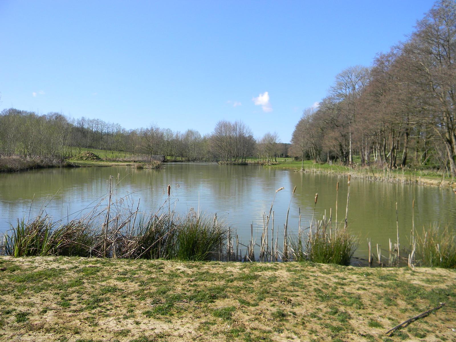 Pond Robertsbridge to Battle