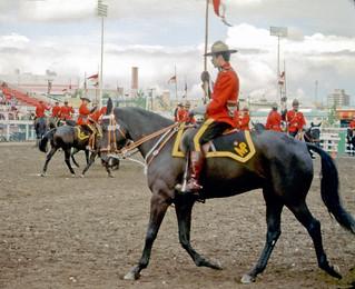 RCMP musical ride, Calgary Stampede, circa 1974 - NK1108