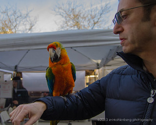 Friendly Parrot | by erink_photography