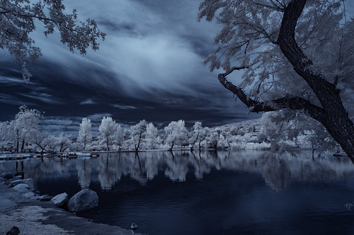 santeelakes infrared infraredphotography ir convertedinfraredcamera santeelakes5 nature surreal trees highcontrast reflections water clouds