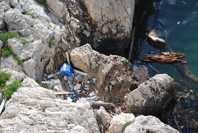 Plastic Busters MPAs: preserving biodiversity from plastics in Mediterranean Marine Protected Areas