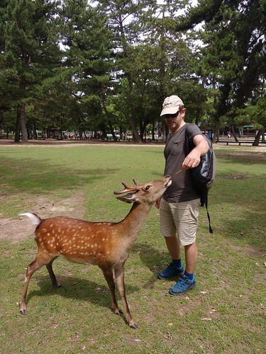 Nara | by Tartanna