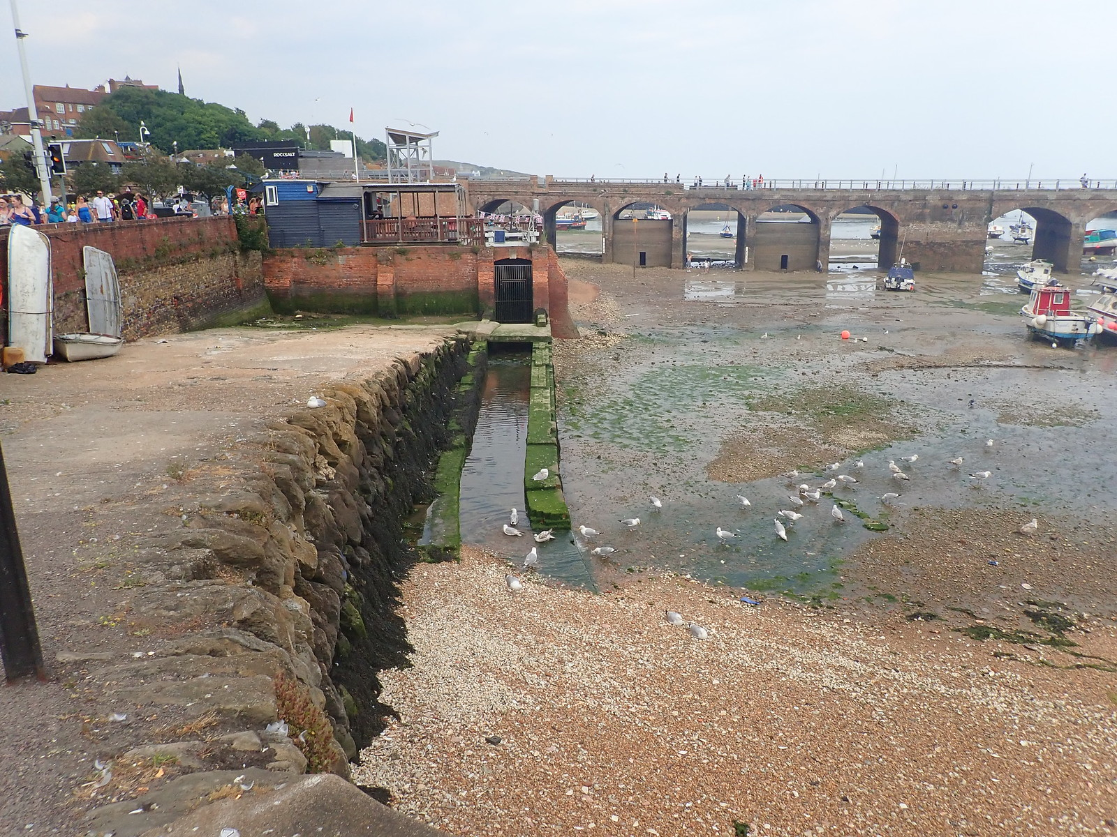 photo from walk Sea walk to Folkestone 07/07/2018