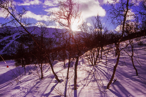 sun mountain holiday snow tree norway holidays skiing slidefilm velvia 35mmfilm analogue hemsedal nikonf80 fujifilmvelvia100 tinden hemsedalnorway