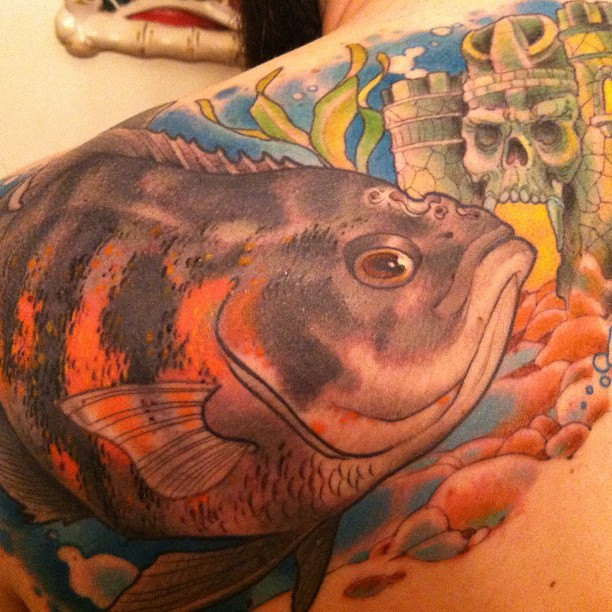 My Pet Oscar Cichlid Latriceroyale Tattoo By Timbied Flickr