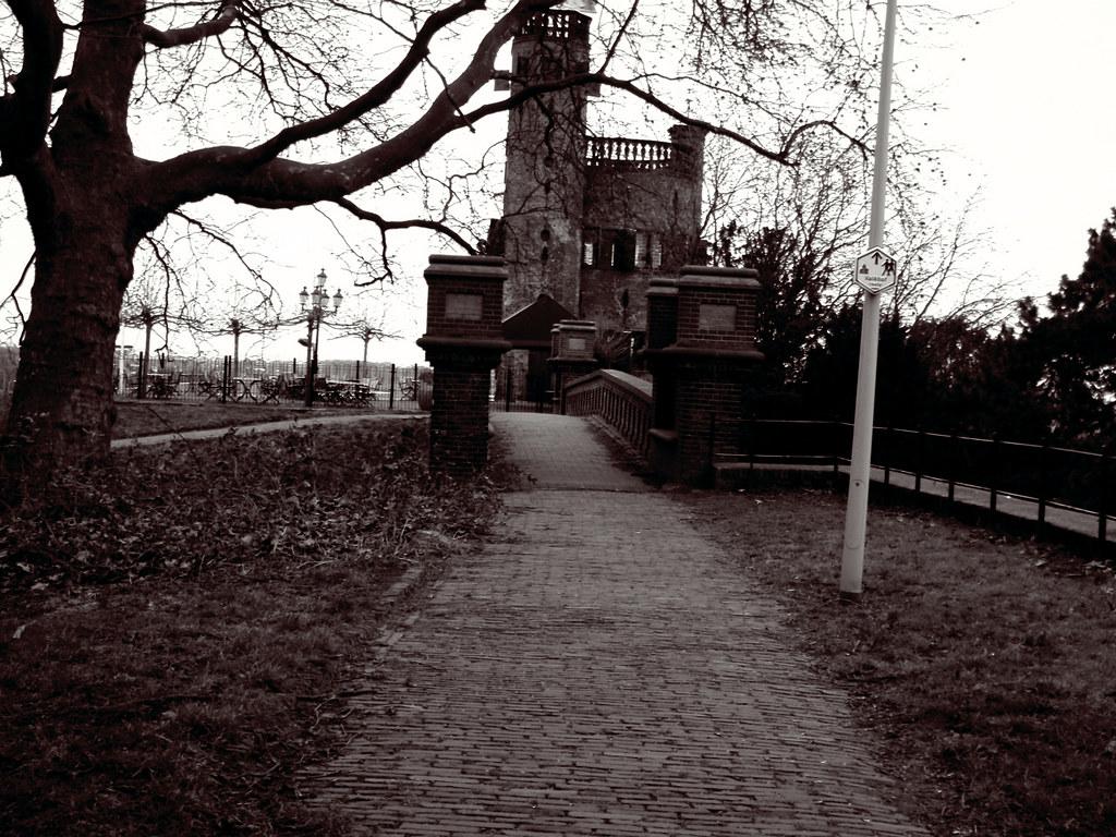 SEO Nijmegen Belvédère