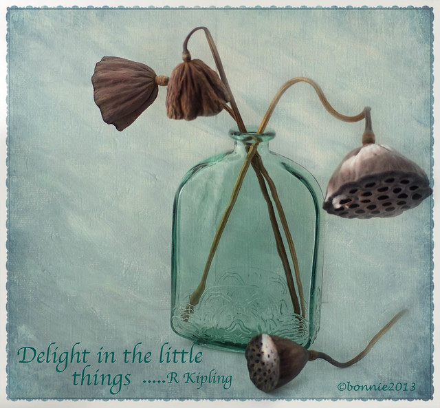 Delight in the little things,,,,,
