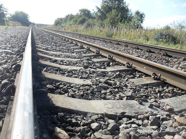 SDC10847N Train Tracks