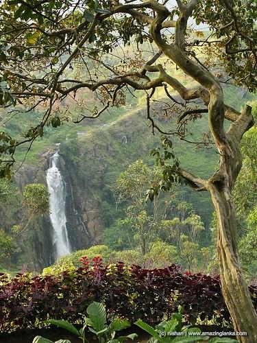 central srilanka