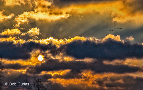 sunrise grandriver springlake