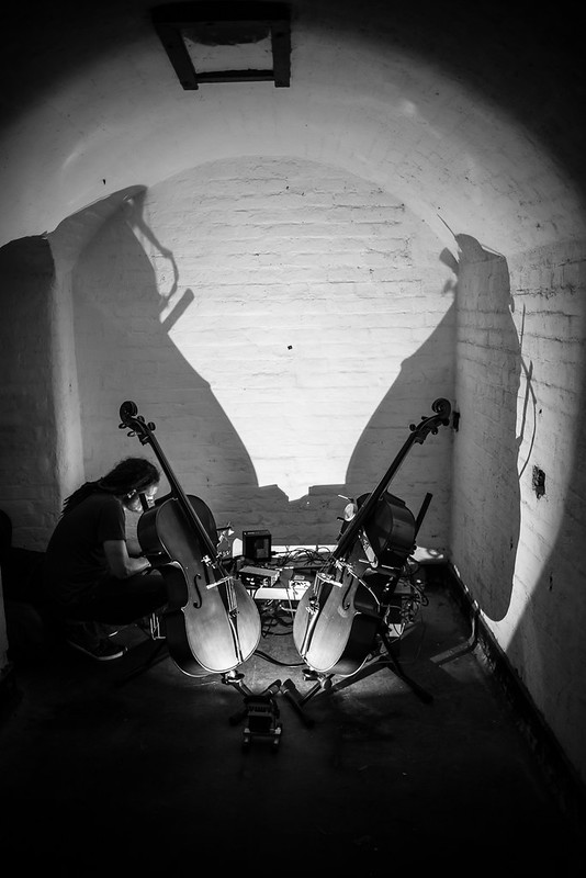 Alice & Luuma: Self-resonating Feedback Cellos