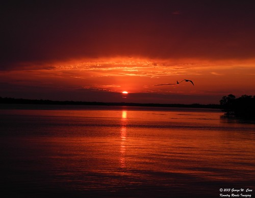 nature nikon case palmetto sunrisesandsunsets manateecounty duskanddawn bishopharbor portmanatee kountryroadsimaging nikonflickraward blinkagain nikoncoolpixp7000 georgecase skywayfishingpiersp terraceiapreservesp