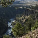 Yellowstone River Picnic Area trail