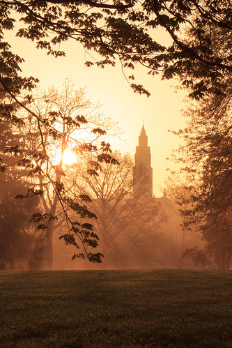 trees tree church fog sunrise dawn stlouis foggy missouri backlit saintlouis francispark saintgabrielthearchangelcatholicchurch