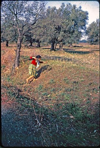 algeria littlegirl kodachrome jeanpaul algérie fillette margnac mitidja