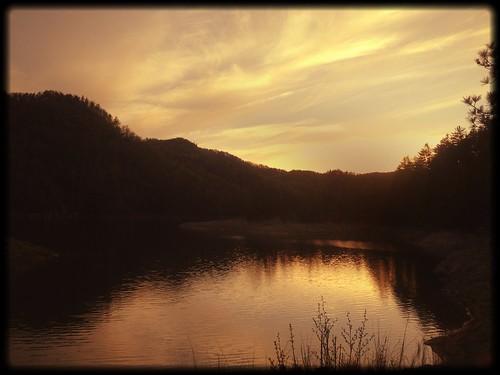 gorgesstatepark uploaded:by=flickrmobile flickriosapp:filter=salamander salamanderfilter