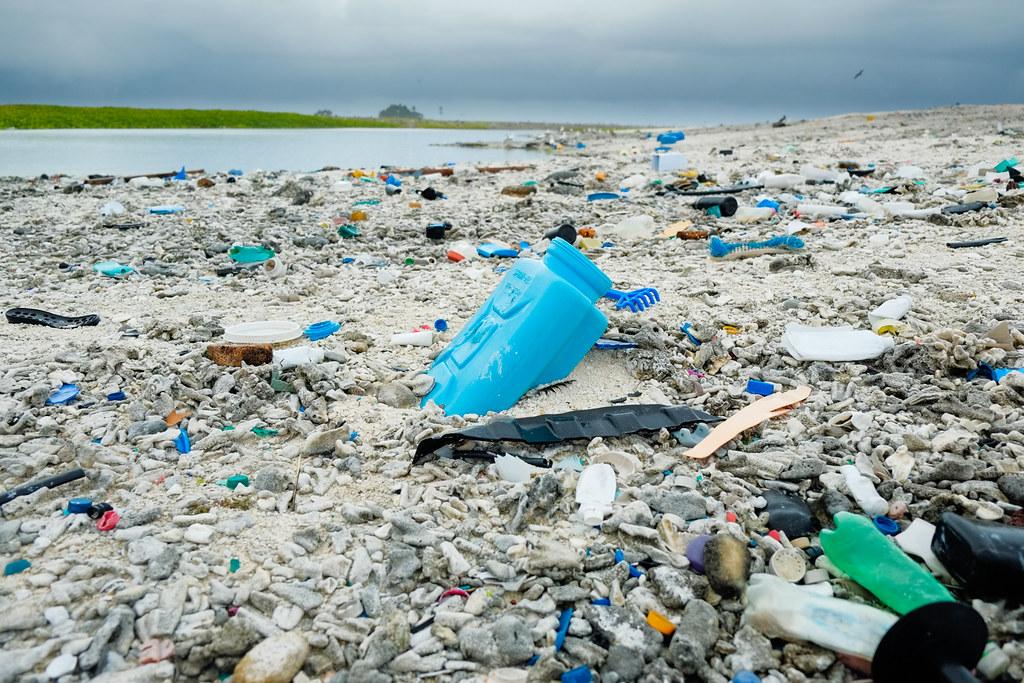 開口向上的塑膠容器使寄居蟹受困死亡。照片來源:Clifton Beard(CC BY-NC 2.0)