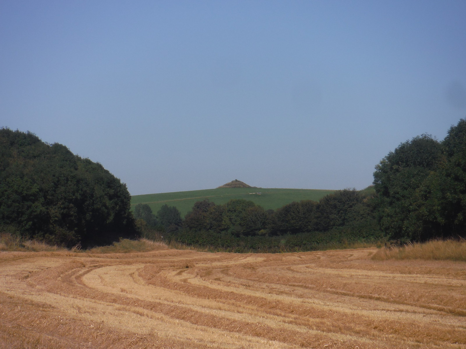 Clandon Barrow from Grove Hill Bottom SWC Walk 275 Dorchester South Circular or to Portesham